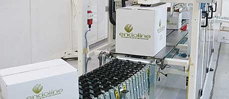 Endoline