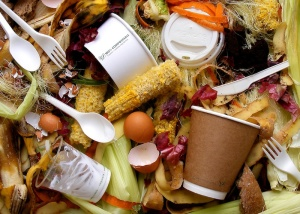 Vegware_compost_1002_foodwaste_800x (1)