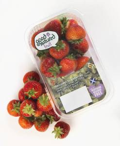 New lidding films for soft fruit from TCL Packaging