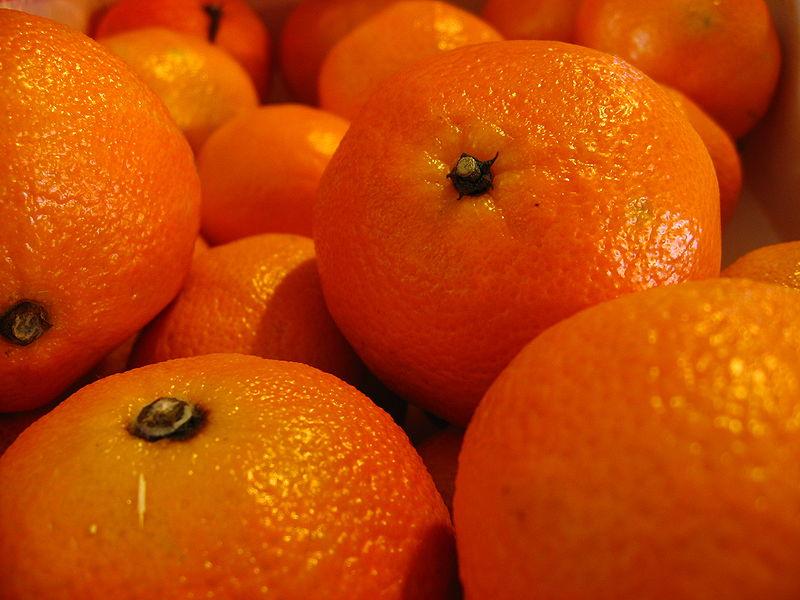 closeup of oranges